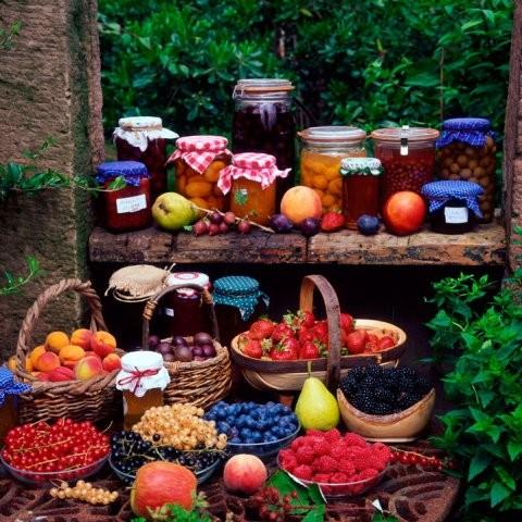 Konzervování zeleniny a ovoce