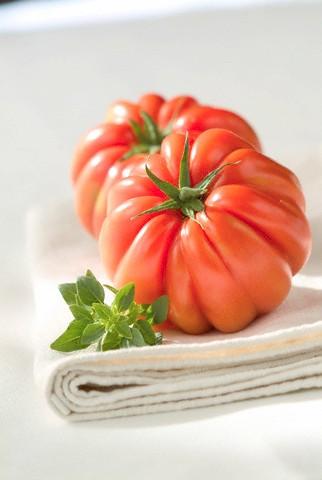 Rajčata pro každého