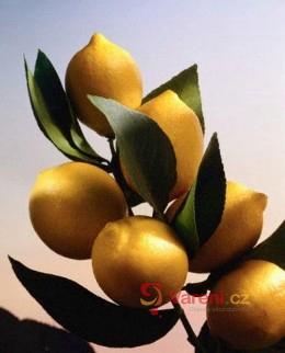 O citronech