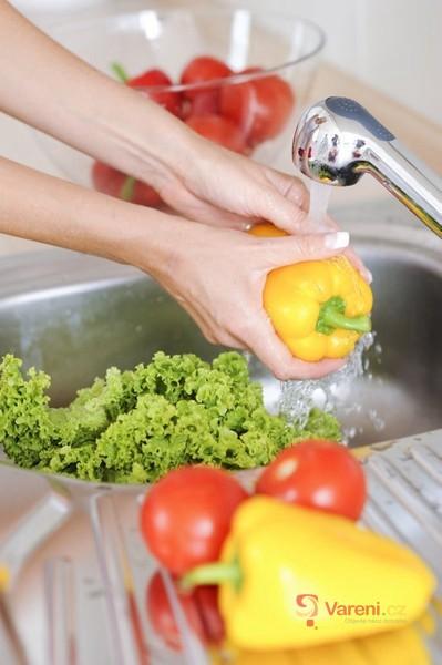 Zpracování paprik a rajčat