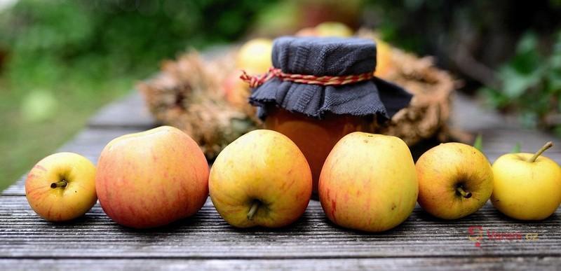 Jak na to: Sklízíme a zavařujeme jablka