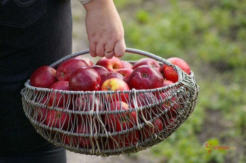 Jablečný ocet - to nejlepší z přírody