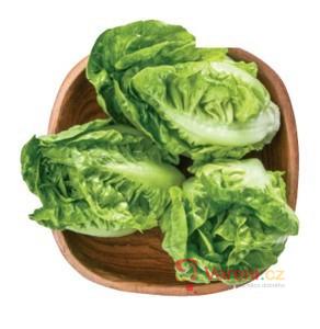 4 nejlepší zelené freshe, které vás postaví na nohy