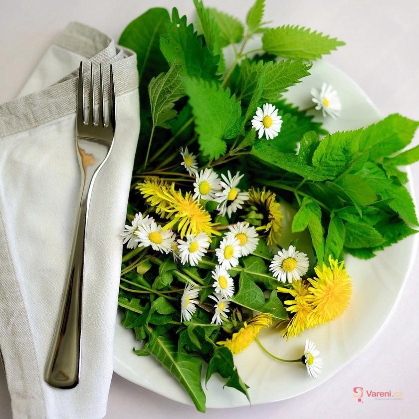 Jarní pokušení v podobě pampelišek: Uvařte z nich výborný med i polévku