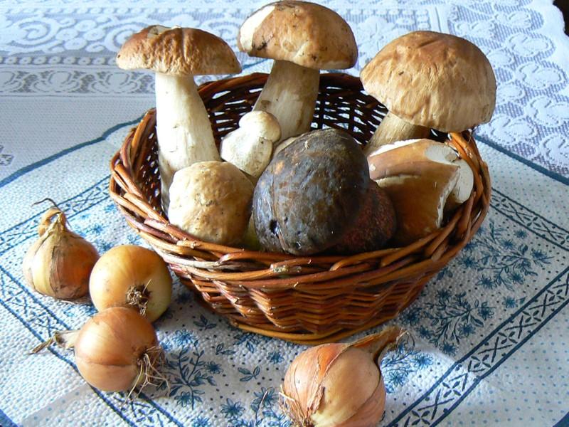 Když máte hub plné košíky: Pusťte se do zavařování