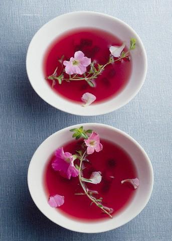 Přivoňte a ochutnejte: Požitkářský čaj Rooibos