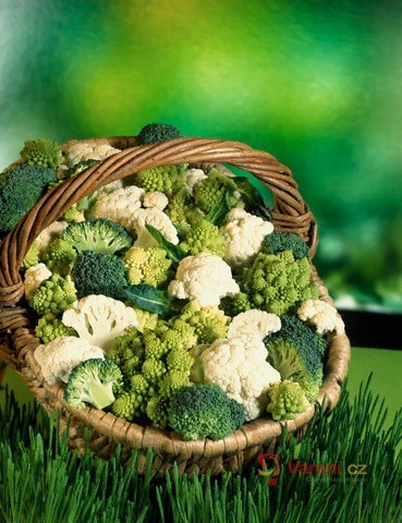 Jarní zelenina v našem jídelníčku 4. díl