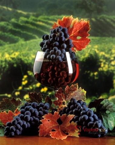 Netradiční vína
