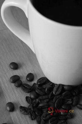 Původ kávy a její pěstování