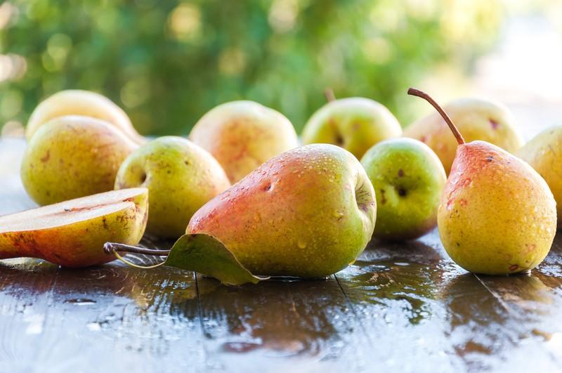 Hrušková sezóna v plném proudu - výběr nejlepších receptů