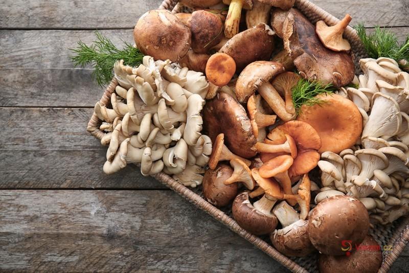 Houbová sezóna je tady! Přinášíme tipy na ty nejlepší houbové recepty!