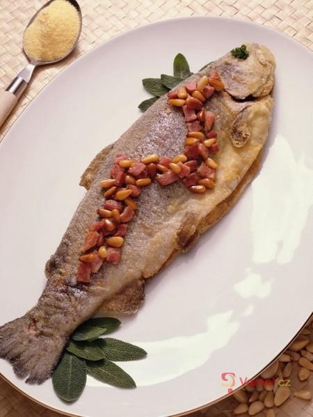 Je libo rybičku?