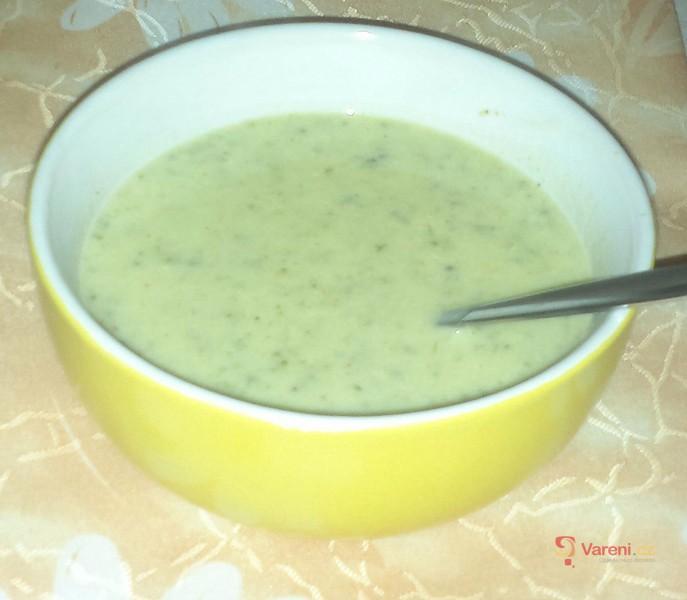 Krémová brokolicová polévka 1