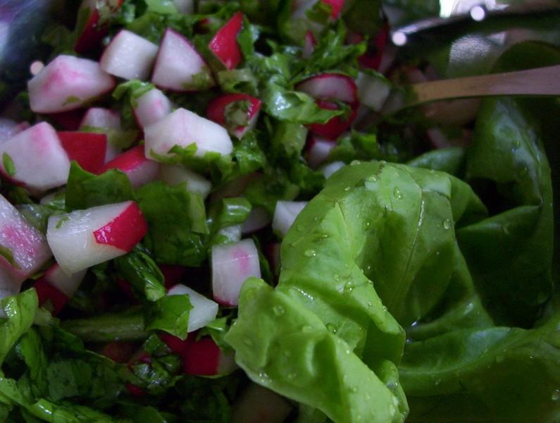 Rychlý ředkvičkový salát 1