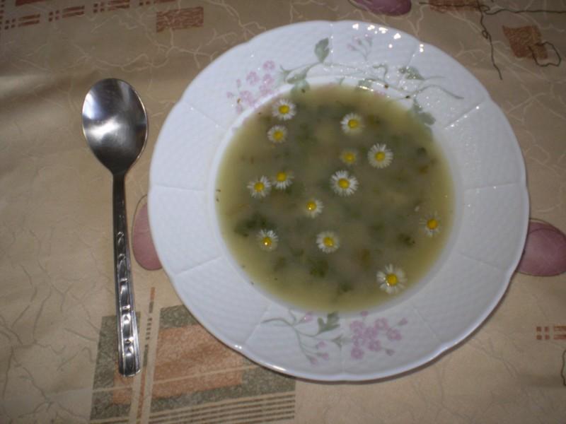 Polévka charčo