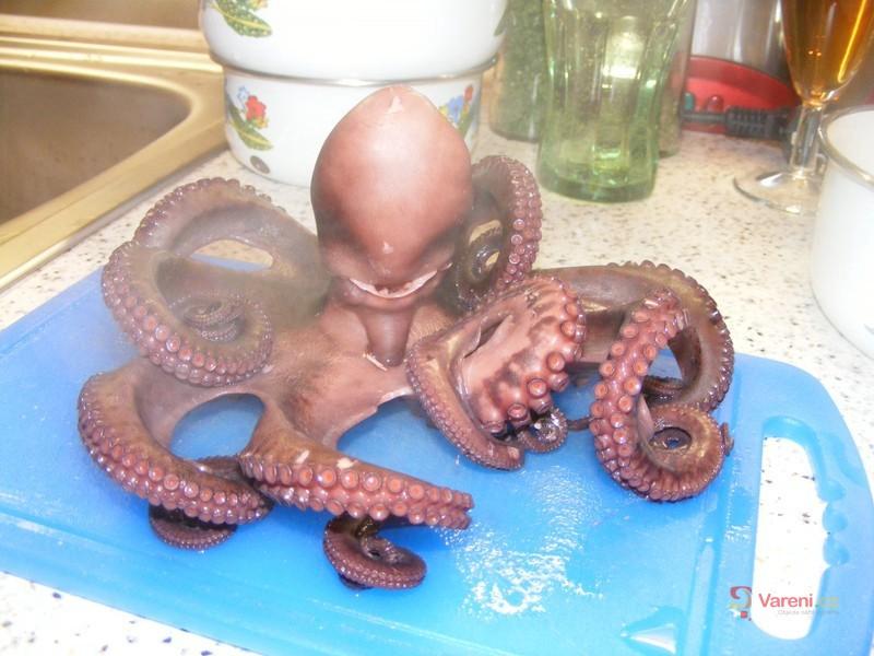 Flambovaná chobotnice