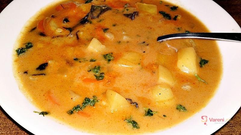 Polévka se Stročkem trubkovitým