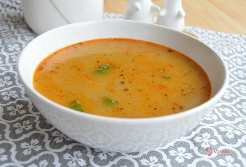 Vegetariánská frankfurtská polévka