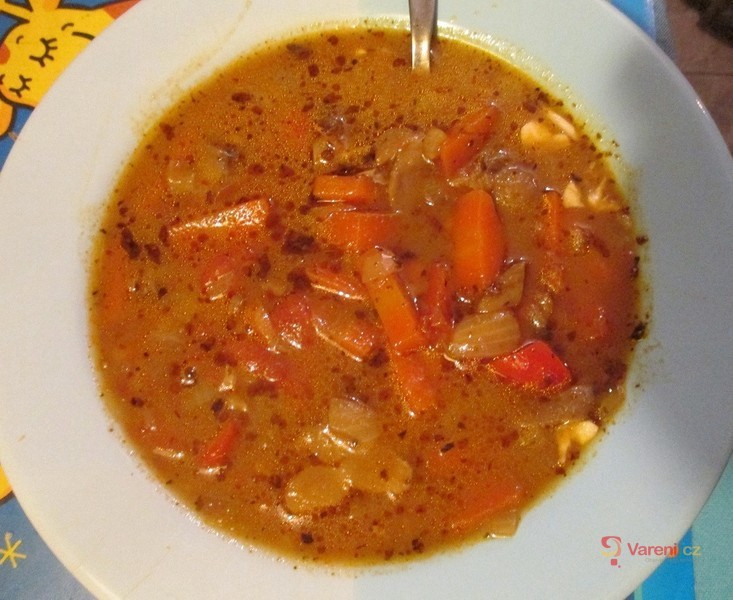Veganská polévka s hlívou a rajčaty