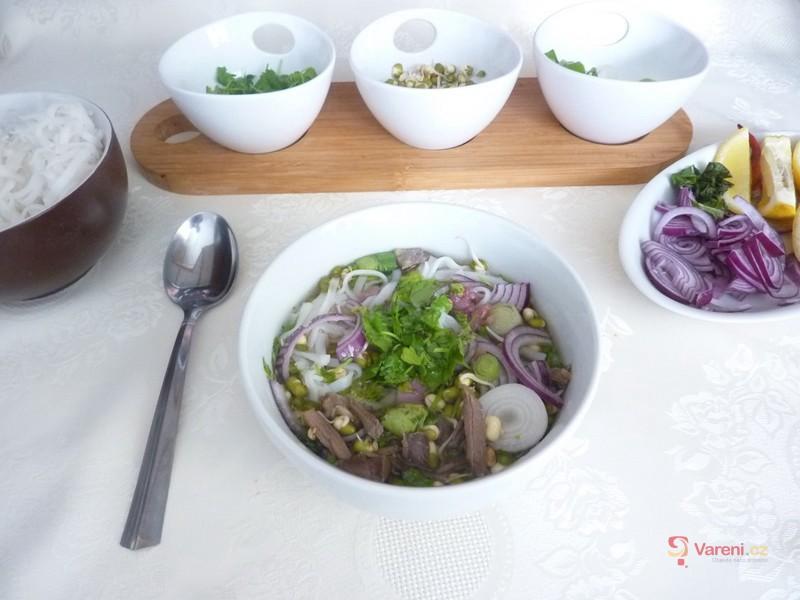 Vietnamská polévka Pho bo