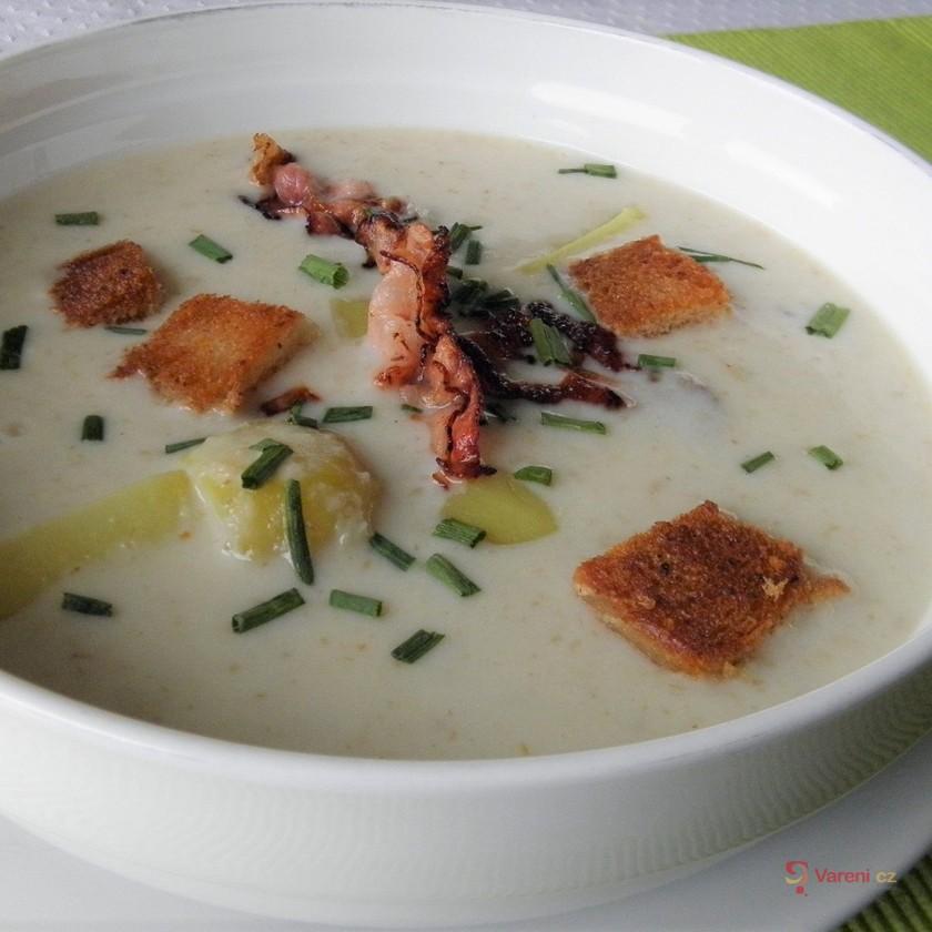Křenová polévka se smetanou