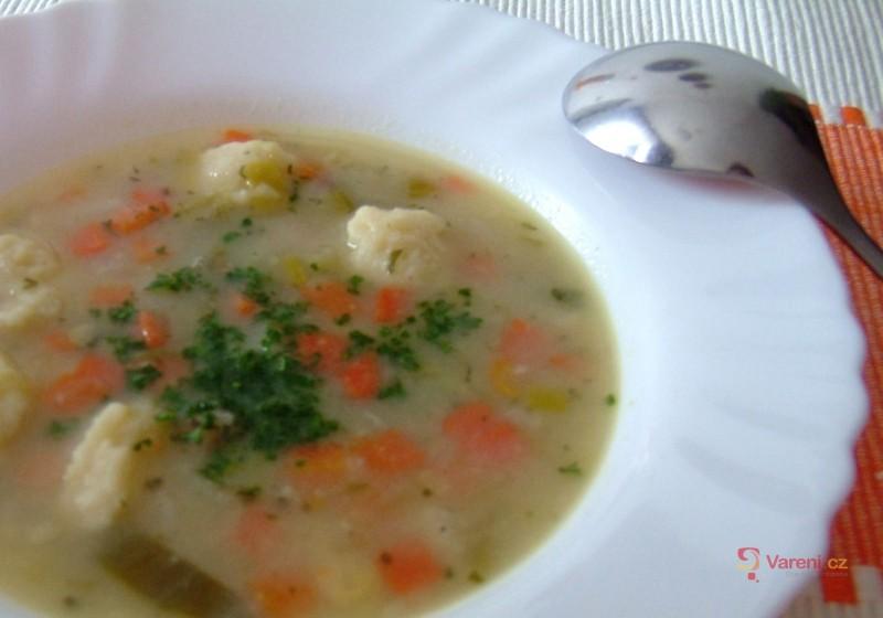 Zeleninová polévka s noky