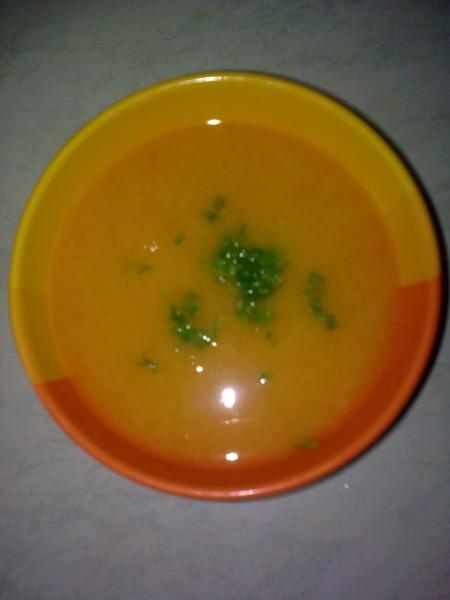 Krémová polévka z mořských ryb