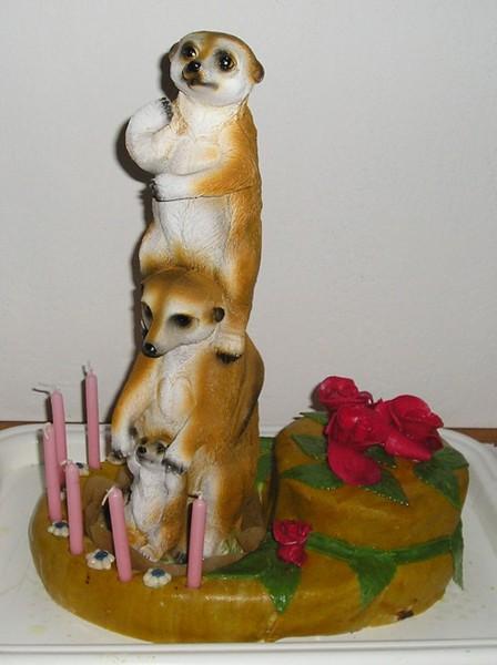Surikatí potahovaný dort