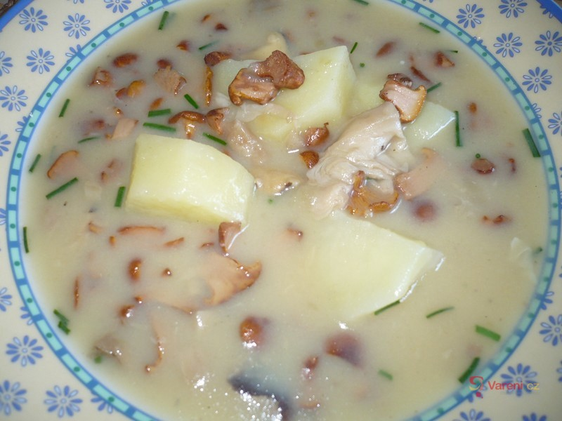 Jemná bramborová polévka s liškami