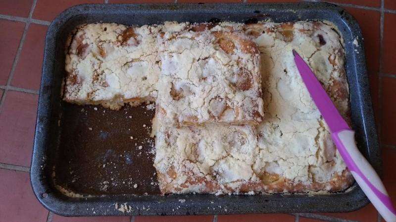 Rychlý meruňkový koláč s drobenkou