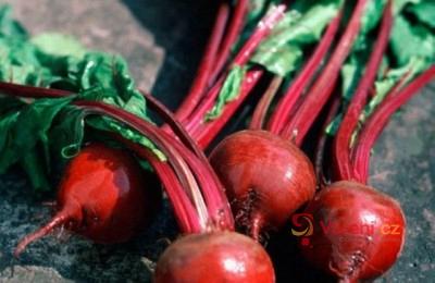 Červená řepa s křenem