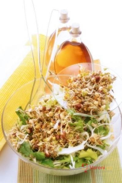Jarní salát s výhonky