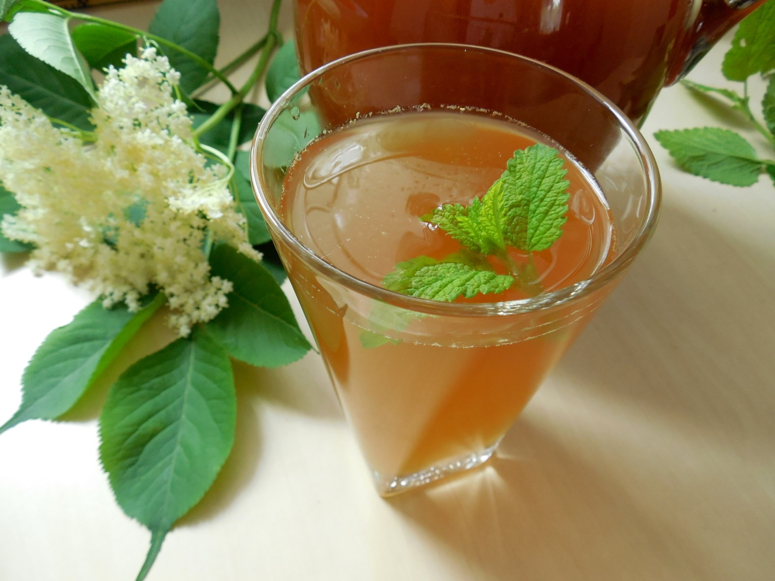 Recept na domácí bezinkovou limonádu krok za krokem