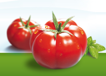 Recepty z krájených rajčat Valfrutta