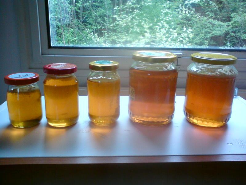 Recept Pampeliškový med - Med z jedné dávky květů.