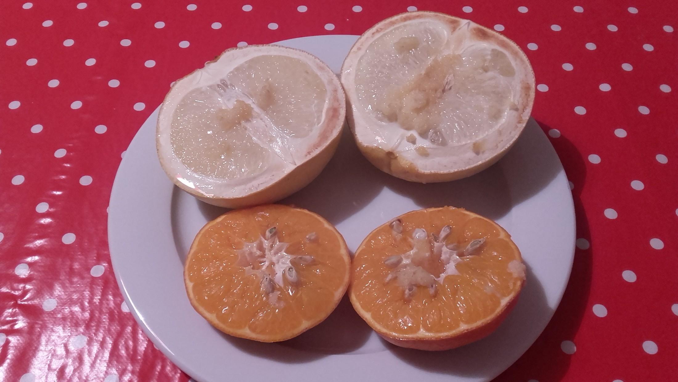Fotografie receptu: Zapékaný grapefruit s medem a zázvorem
