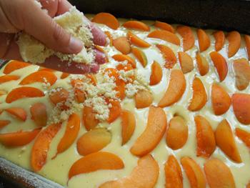 Meruňkový koláč