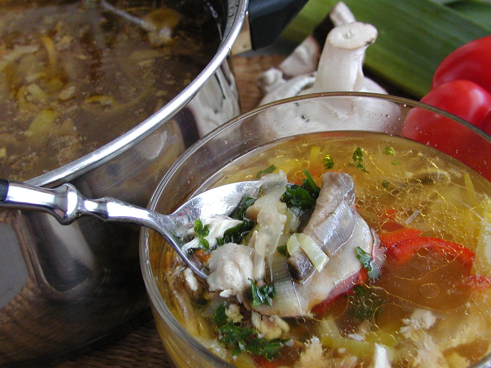 Kuřecí polévka se žampiony 1