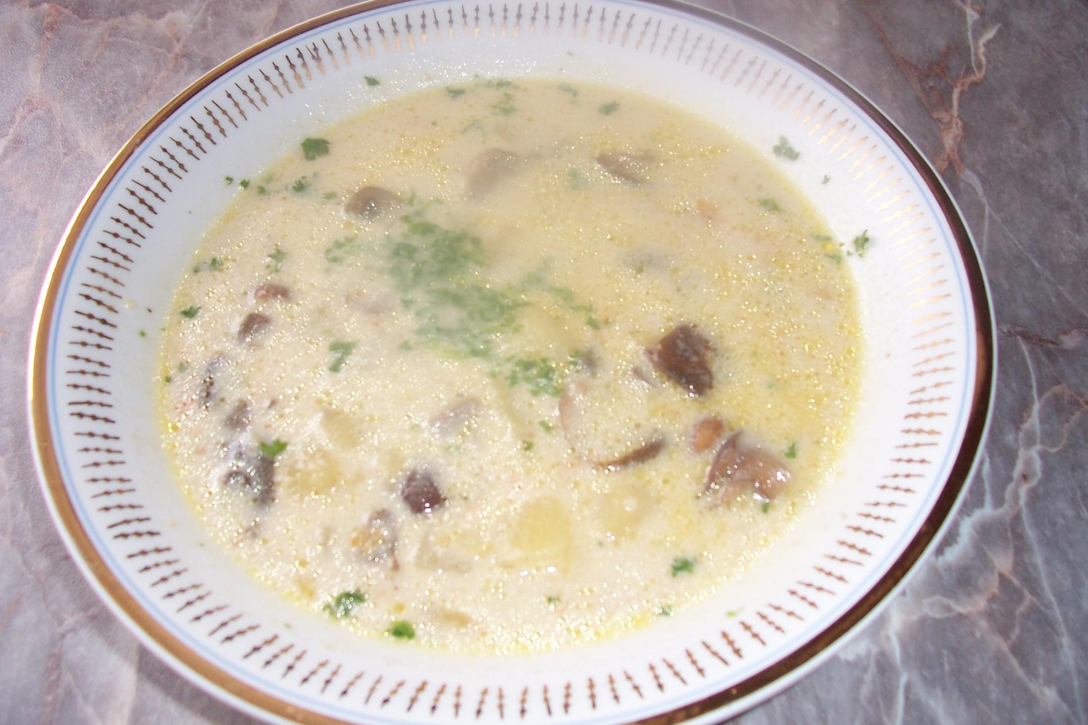 Hříbková polévka