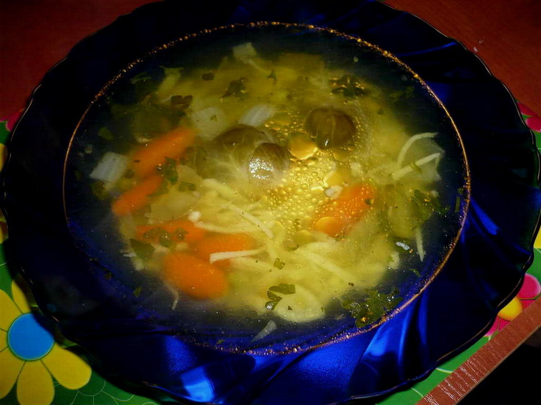 Pravá domácí králičí polévka