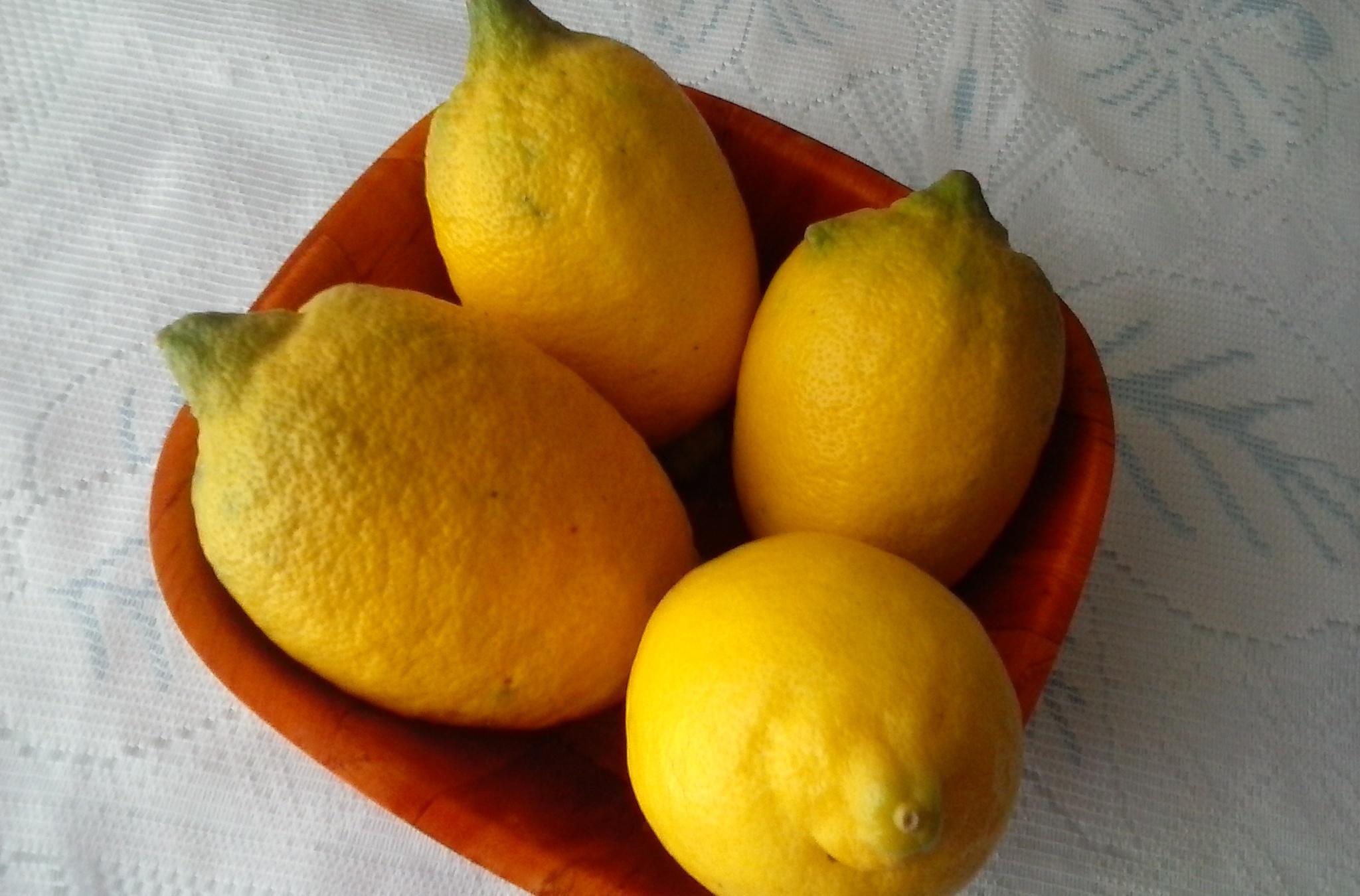 Citronový nápoj se zázvorem