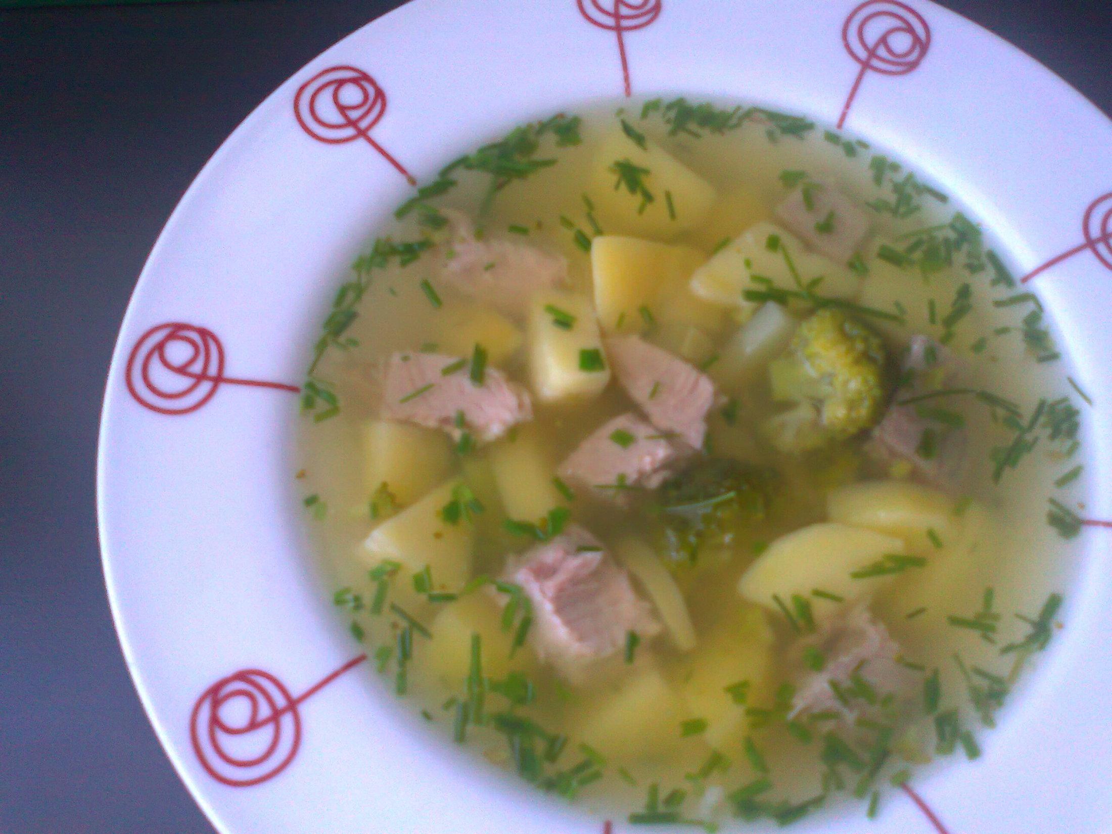 Polévka z vepřového masa a zeleniny