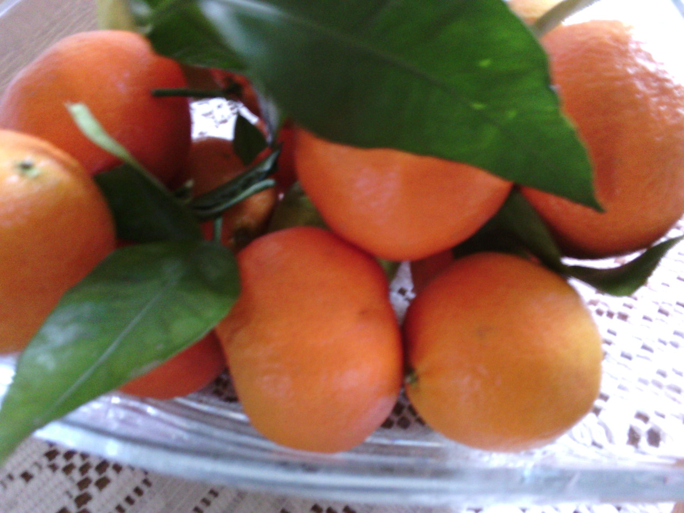 Mandarinkový krém do zákusků